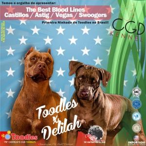 Toodles e Delilah - pequeno
